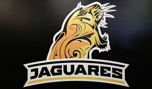 Los Jaguares super rugby