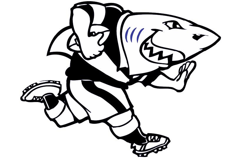 Gli Sharks sono stati fondati a Durban nel 1995