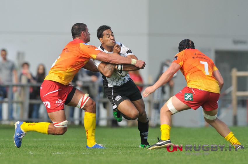 zebre rugby scarlets