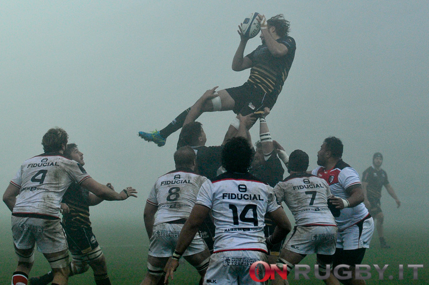zebre rugby tolosa champions cup