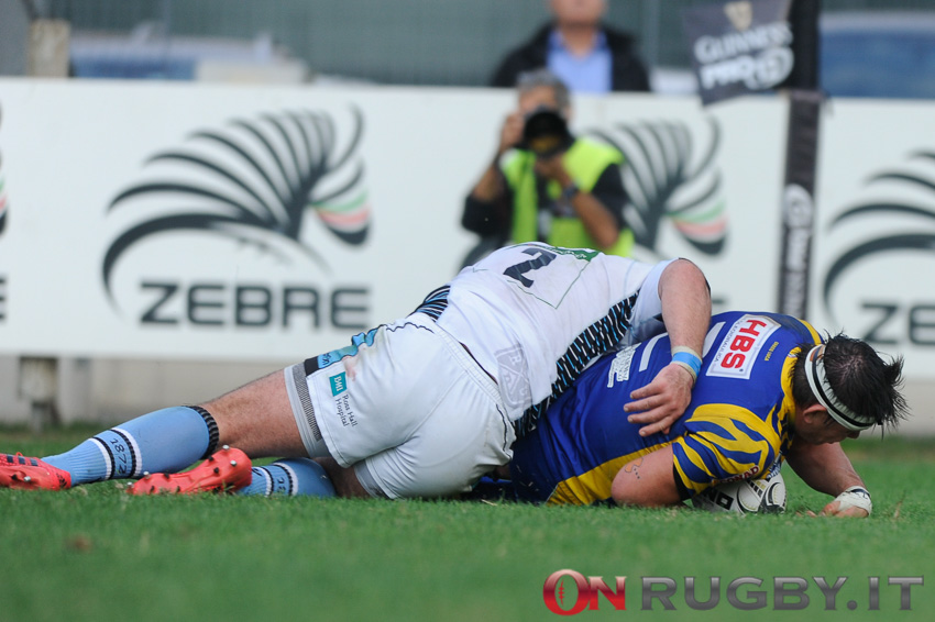 zebre rugby pro12