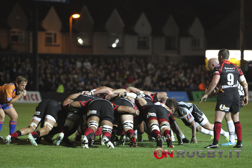 newport dragons pro12 rugby