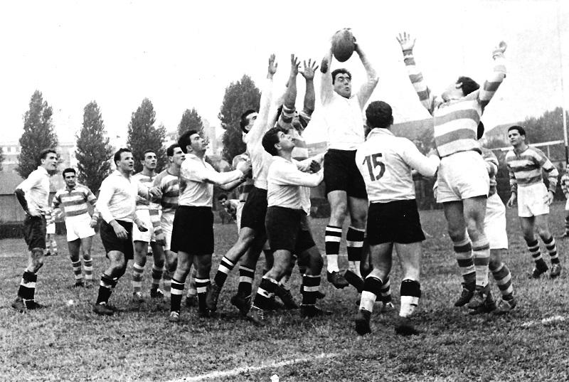 amatori milano rugby