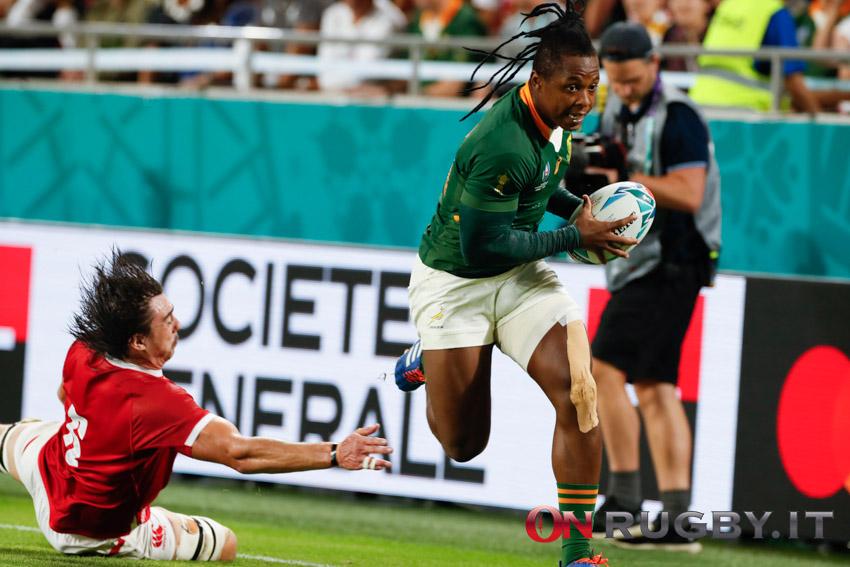 Entro venerdì il Sudafrica dovrà ufficializzare o meno la sua partecipazione al Rugby Championship ph. Sebastiano Pessina