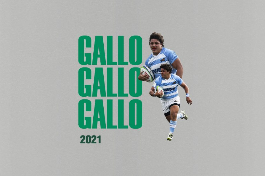 Benetton Rugby Gallo