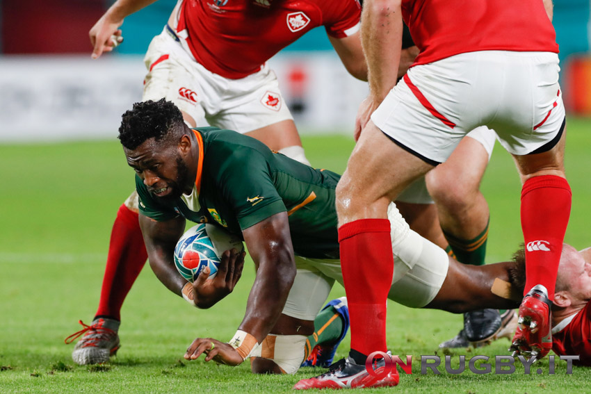 Sudafrica, verso i Lions: gli Springboks recuperano anche Kolisi