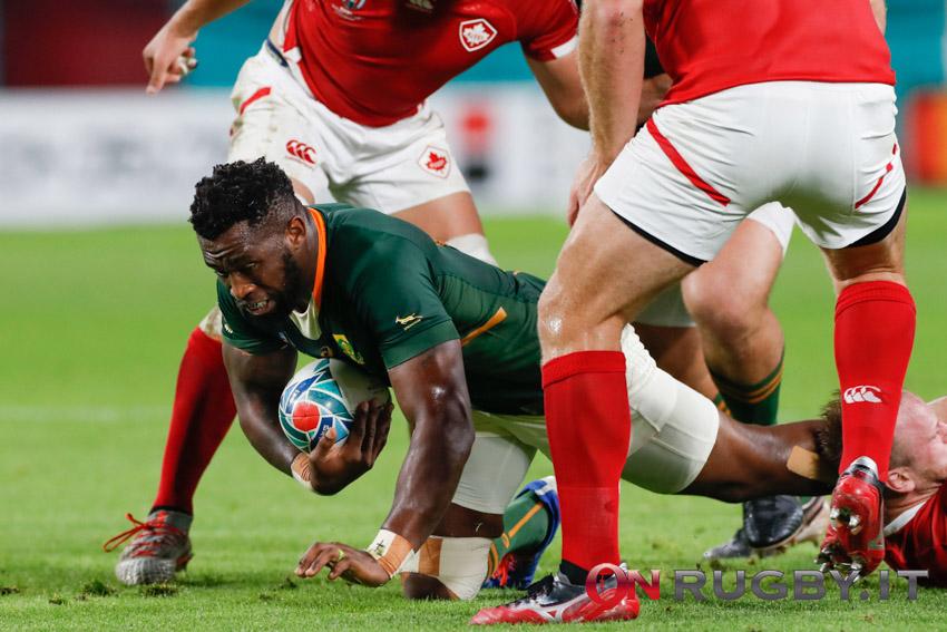 Siya Kolisi capitano del Sudafrica